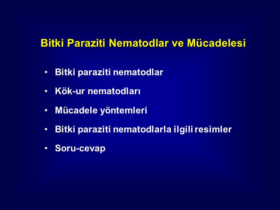 Bitki paraziti nematodlar Kök-ur nematodları Mücadele yöntemleri Bitki paraziti nematodlarla ilgili resimler Soru-cevap 3 Bitki Paraziti Nematodlar ve