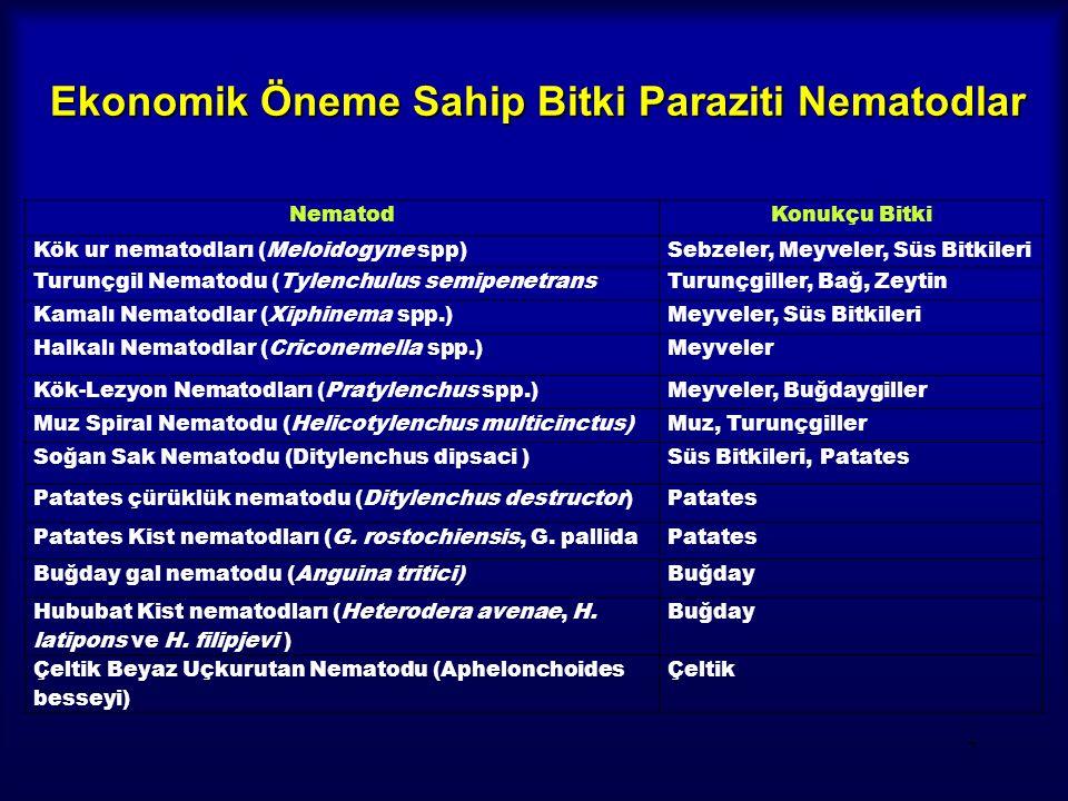 7 NematodKonukçu Bitki Kök ur nematodları (Meloidogyne spp)Sebzeler, Meyveler, Süs Bitkileri Turunçgil Nematodu (Tylenchulus semipenetransTurunçgiller