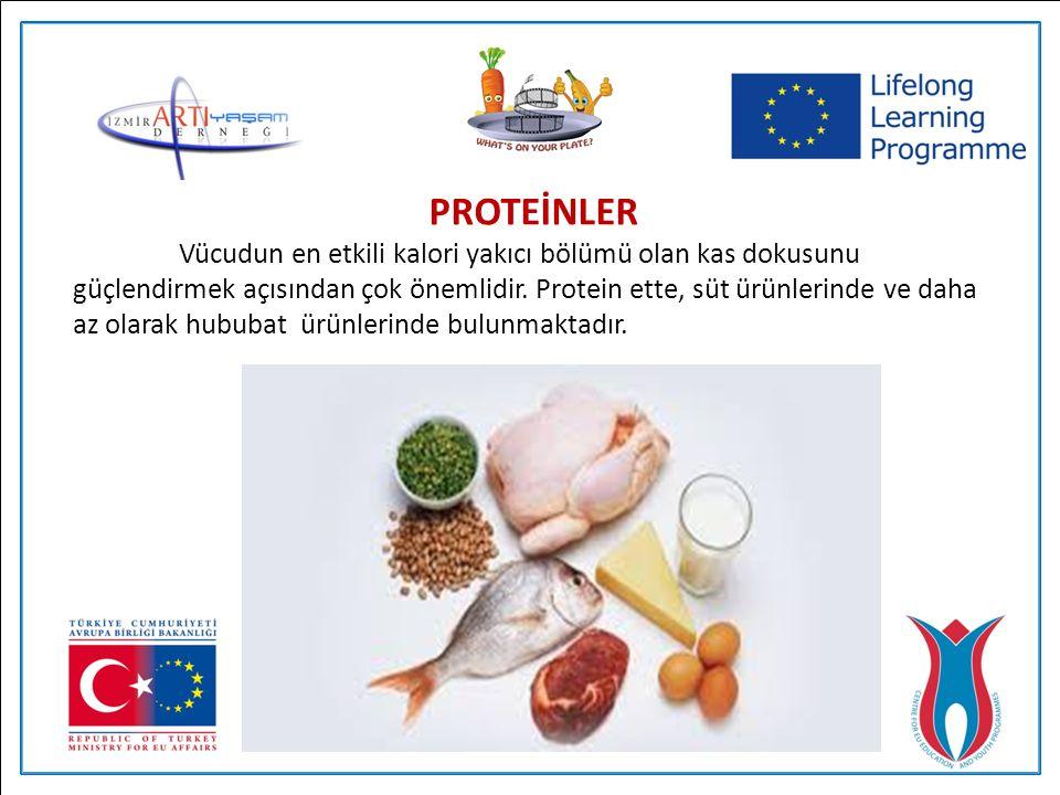 PROTEİNLER Vücudun en etkili kalori yakıcı bölümü olan kas dokusunu güçlendirmek açısından çok önemlidir.