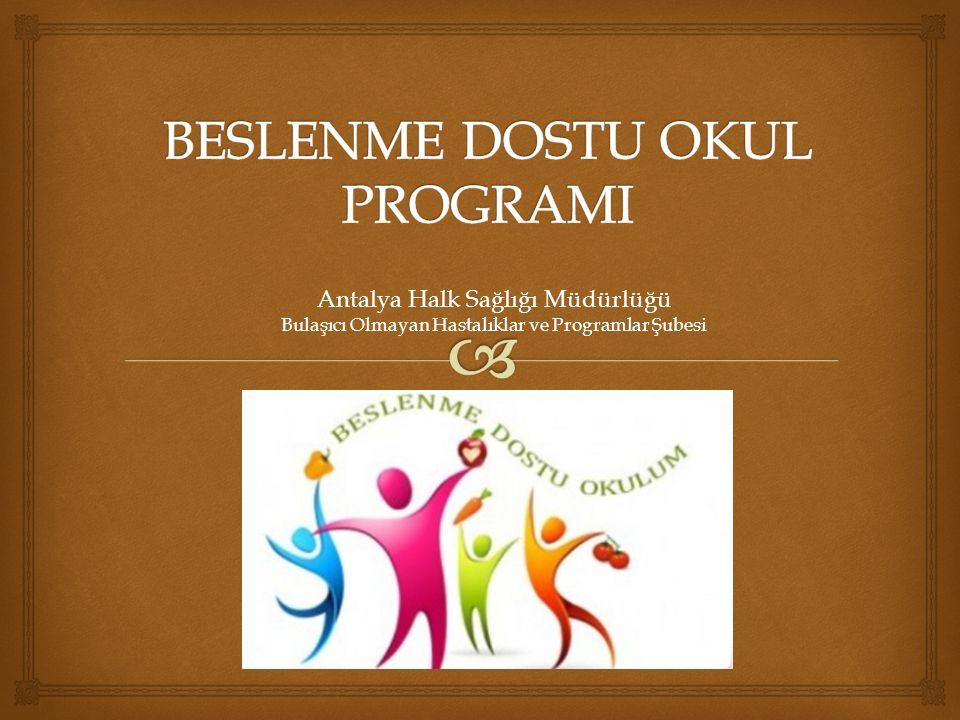 Antalya Halk Sağlığı Müdürlüğü Bulaşıcı Olmayan Hastalıklar ve Programlar Şubesi