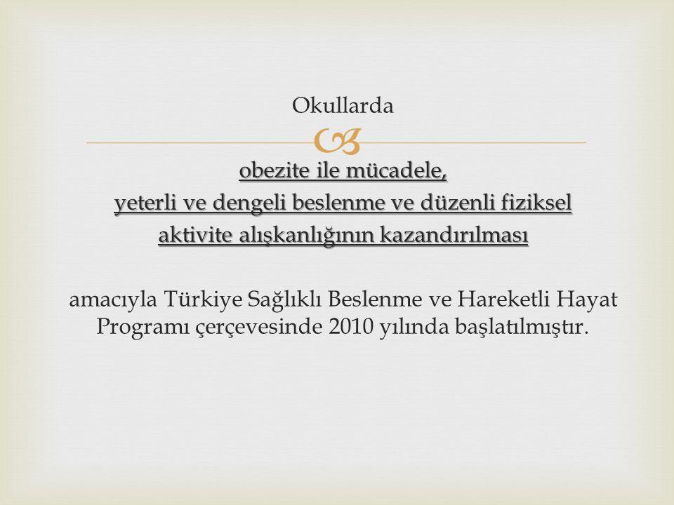  Okullarda obezite ile mücadele, yeterli ve dengeli beslenme ve düzenli fiziksel aktivite alışkanlığının kazandırılması amacıyla Türkiye Sağlıklı Beslenme ve Hareketli Hayat Programı çerçevesinde 2010 yılında başlatılmıştır.
