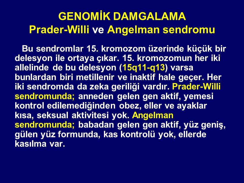 GENOMİK DAMGALAMA Prader-Willi ve Angelman sendromu Bu sendromlar 15. kromozom üzerinde küçük bir delesyon ile ortaya çıkar. 15. kromozomun her iki al