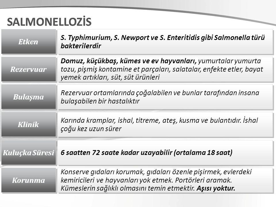 Etken S. Typhimurium, S. Newport ve S.