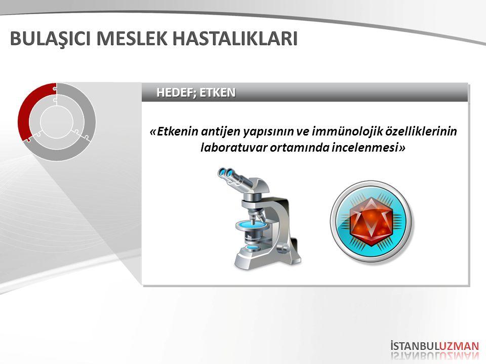 HEDEF; ETKEN «Etkenin antijen yapısının ve immünolojik özelliklerinin laboratuvar ortamında incelenmesi»