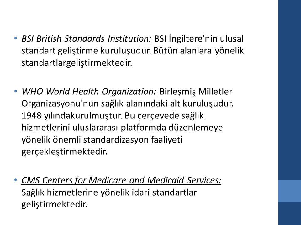 BSI British Standards Institution: BSI İngiltere nin ulusal standart geliştirme kuruluşudur.
