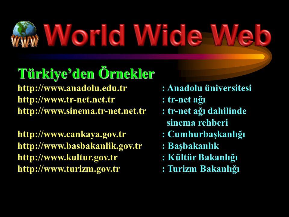 Türkiye'den Örnekler http://www.anadolu.edu.tr: Anadolu üniversitesi http://www.tr-net.net.tr: tr-net ağı http://www.sinema.tr-net.net.tr: tr-net ağı dahilinde sinema rehberi http://www.cankaya.gov.tr: Cumhurbaşkanlığı http://www.basbakanlik.gov.tr: Başbakanlık http://www.kultur.gov.tr: Kültür Bakanlığı http://www.turizm.gov.tr: Turizm Bakanlığı