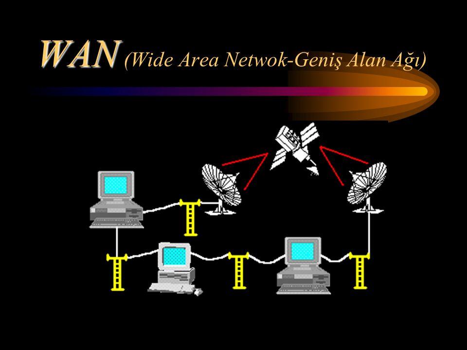 WAN WAN (Wide Area Netwok-Geniş Alan Ağı)