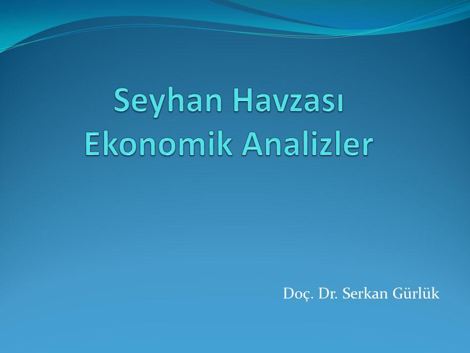 Doç. Dr. Serkan Gürlük