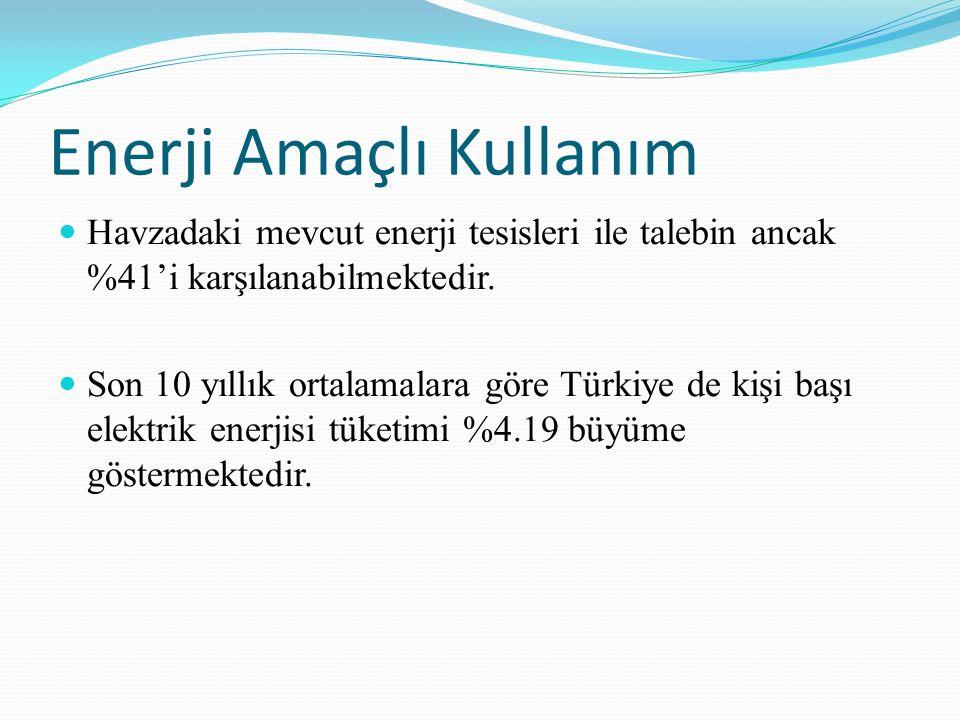 Enerji Amaçlı Kullanım Havzadaki mevcut enerji tesisleri ile talebin ancak %41'i karşılanabilmektedir. Son 10 yıllık ortalamalara göre Türkiye de kişi