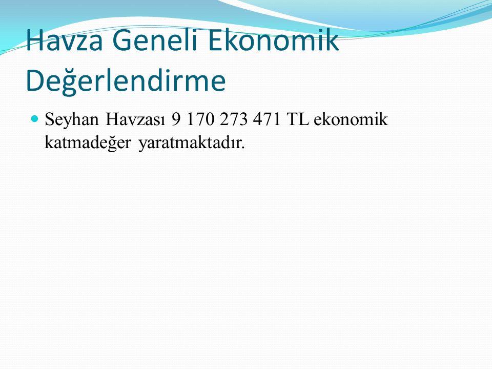Havza Geneli Ekonomik Değerlendirme Seyhan Havzası 9 170 273 471 TL ekonomik katmadeğer yaratmaktadır.