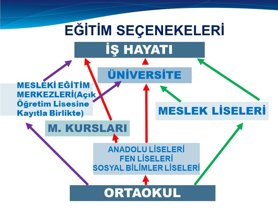 ÜNİVERSİTE İŞ HAYATI M.