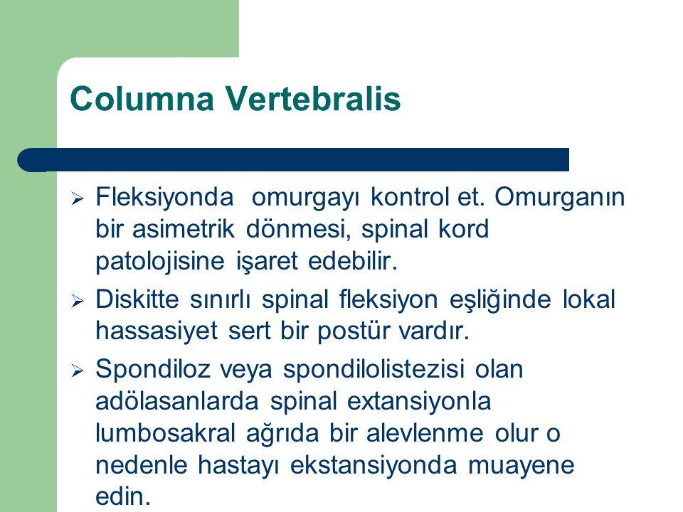 Columna Vertebralis  Fleksiyonda omurgayı kontrol et. Omurganın bir asimetrik dönmesi, spinal kord patolojisine işaret edebilir.  Diskitte sınırlı s