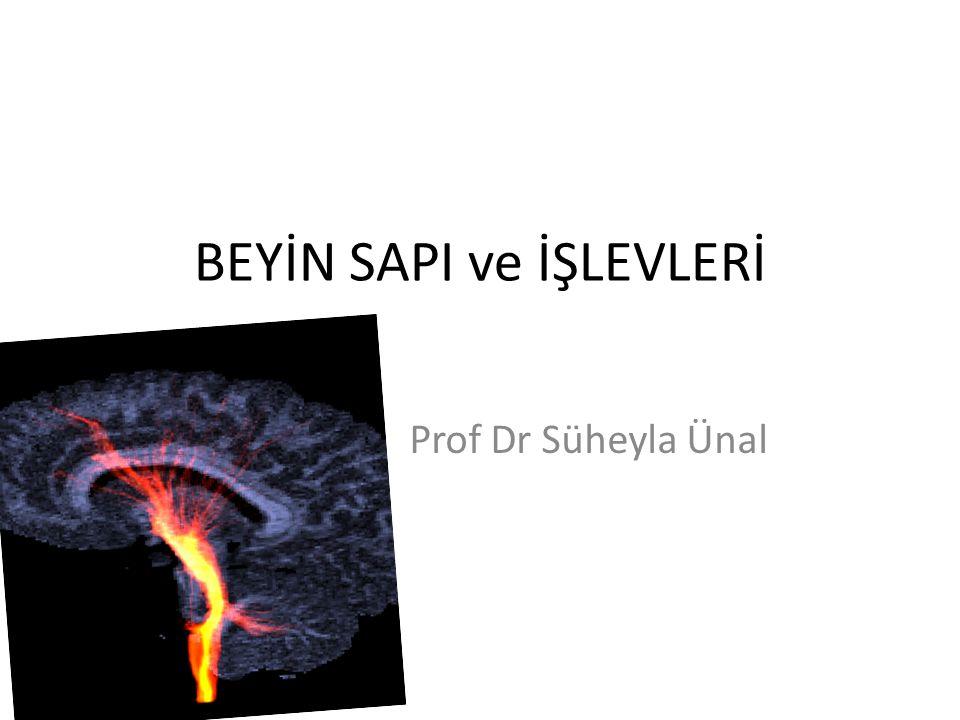 BEYİN SAPI ve İŞLEVLERİ Prof Dr Süheyla Ünal