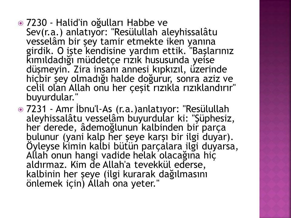  7230 - Halid'in oğulları Habbe ve Sev(r.a.) anlatıyor:
