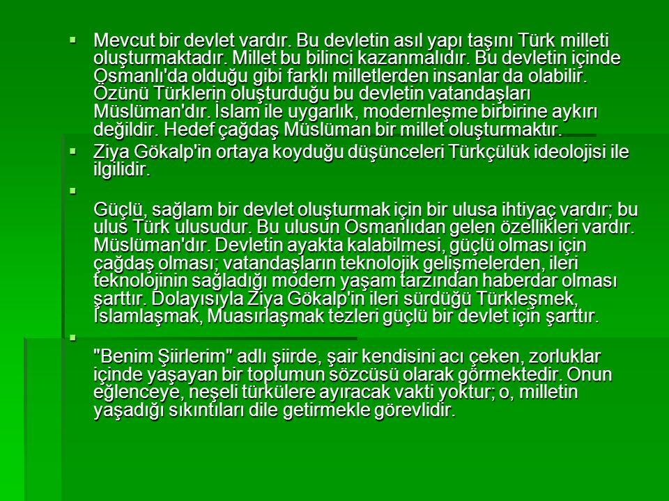  Mevcut bir devlet vardır. Bu devletin asıl yapı taşını Türk milleti oluşturmaktadır.