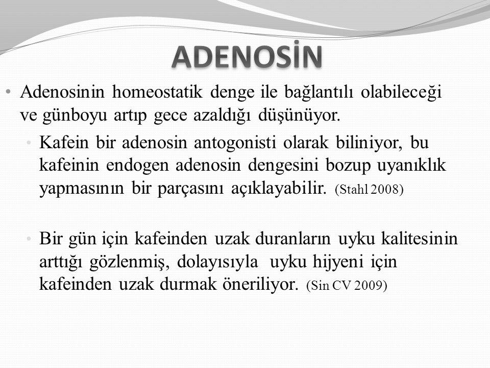 Adenosinin homeostatik denge ile bağlantılı olabileceği ve günboyu artıp gece azaldığı düşünüyor. Kafein bir adenosin antogonisti olarak biliniyor, bu