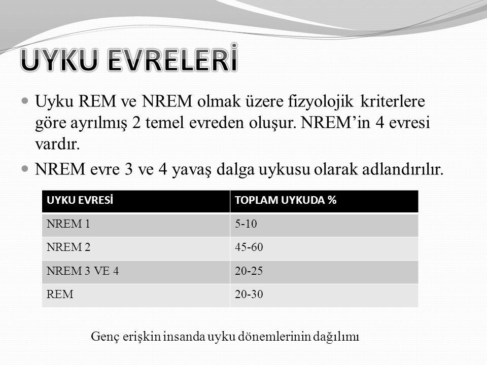 Uyku REM ve NREM olmak üzere fizyolojik kriterlere göre ayrılmış 2 temel evreden oluşur. NREM'in 4 evresi vardır. NREM evre 3 ve 4 yavaş dalga uykusu