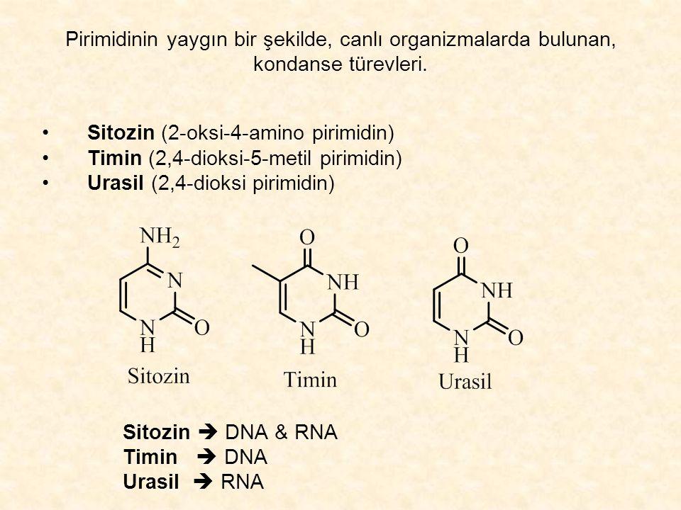 Sitozin (2-oksi-4-amino pirimidin) Timin (2,4-dioksi-5-metil pirimidin) Urasil (2,4-dioksi pirimidin) Sitozin  DNA & RNA Timin  DNA Urasil  RNA Pirimidinin yaygın bir şekilde, canlı organizmalarda bulunan, kondanse türevleri.