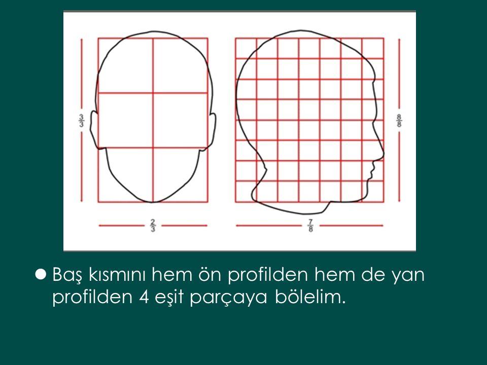 Baş kısmını hem ön profilden hem de yan profilden 4 eşit parçaya bölelim.