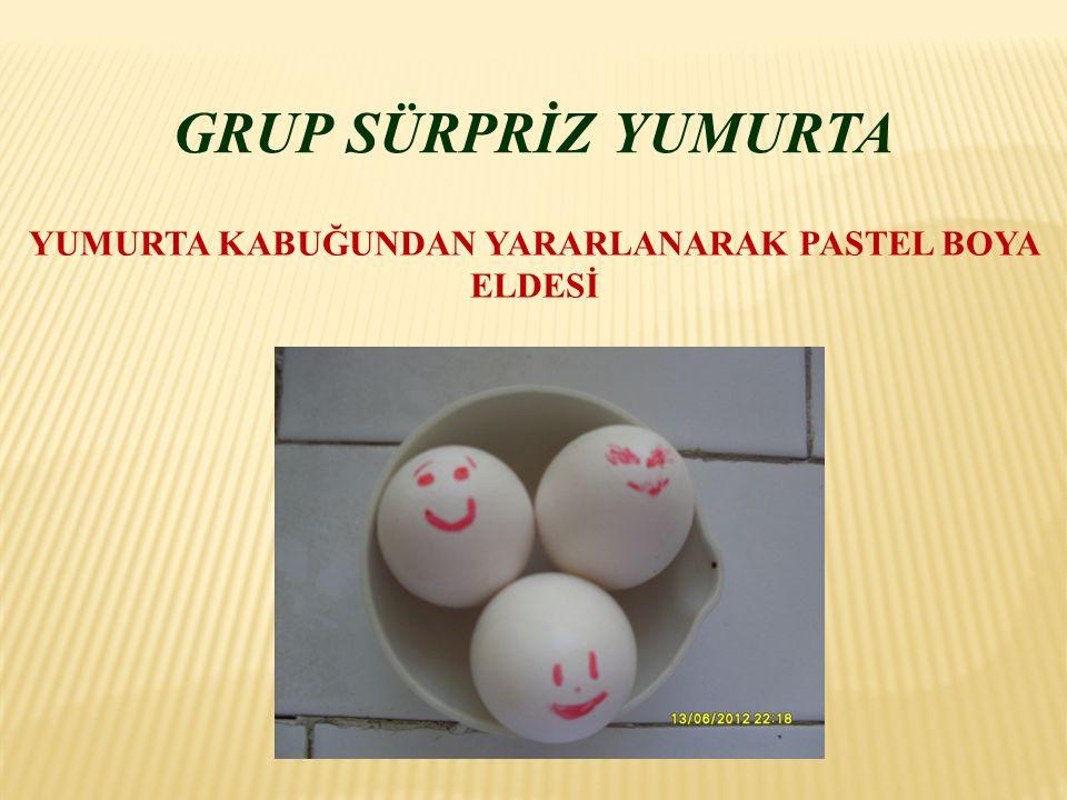 ÇALIŞMANIN AMACI Yumurta kabuklarının kullanıma kazandırılması.