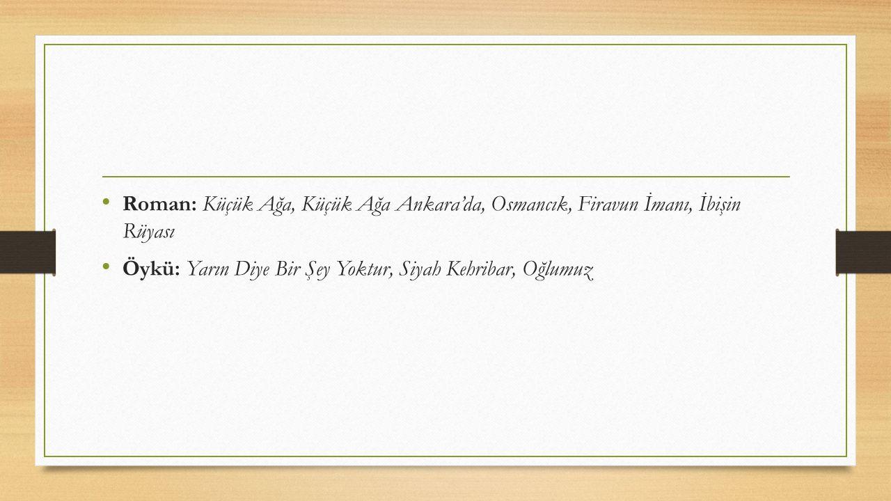 Roman: Küçük Ağa, Küçük Ağa Ankara'da, Osmancık, Firavun İmanı, İbişin Rüyası Öykü: Yarın Diye Bir Şey Yoktur, Siyah Kehribar, Oğlumuz