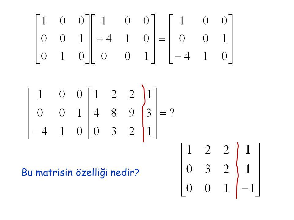 Bu matrisin özelliği nedir?