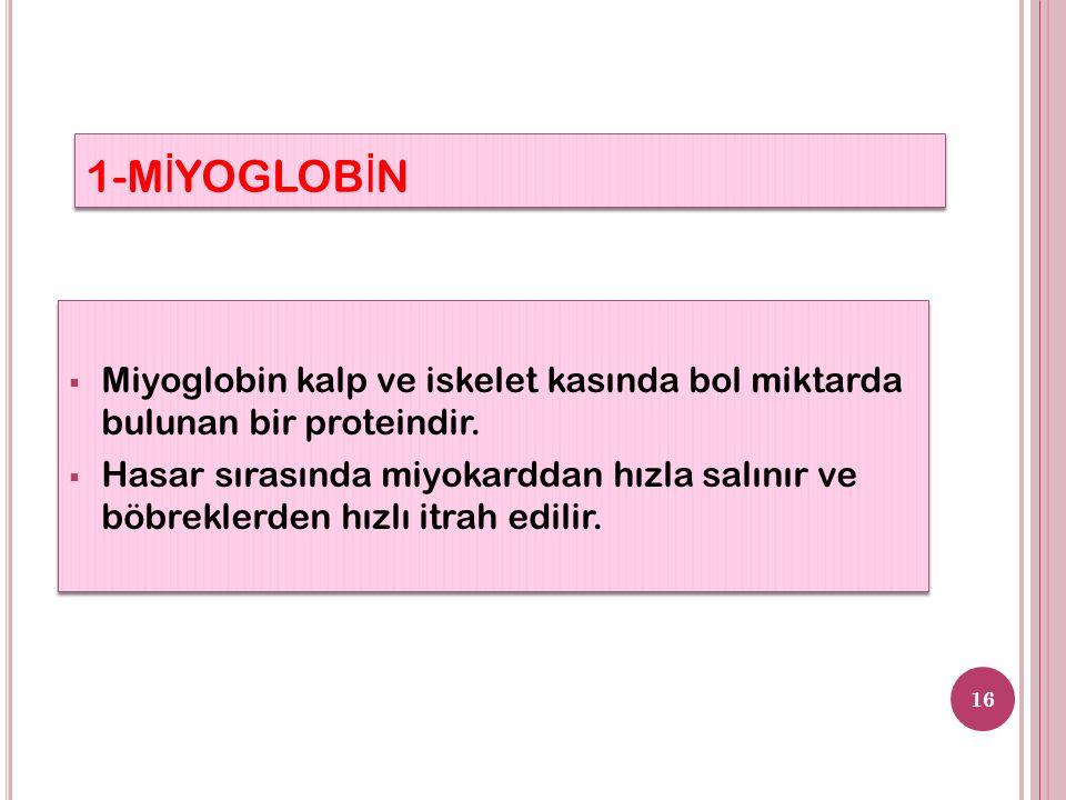 1-M İ YOGLOB İ N 16  Miyoglobin kalp ve iskelet kasında bol miktarda bulunan bir proteindir.