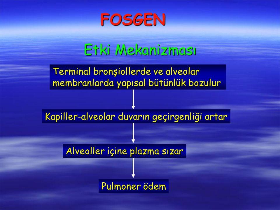 FOSGEN Terminal bronşiollerde ve alveolar membranlarda yapısal bütünlük bozulur Kapiller-alveolar duvarın geçirgenliği artar Alveoller içine plazma sızar Pulmoner ödem Etki Mekanizması