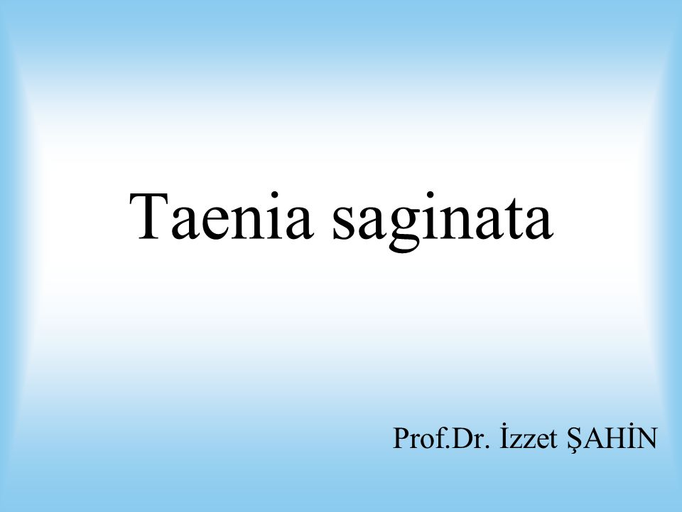 Taenia saginata Prof.Dr. İzzet ŞAHİN