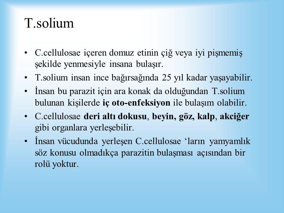 T.solium C.cellulosae içeren domuz etinin çiğ veya iyi pişmemiş şekilde yenmesiyle insana bulaşır. T.solium insan ince bağırsağında 25 yıl kadar yaşay