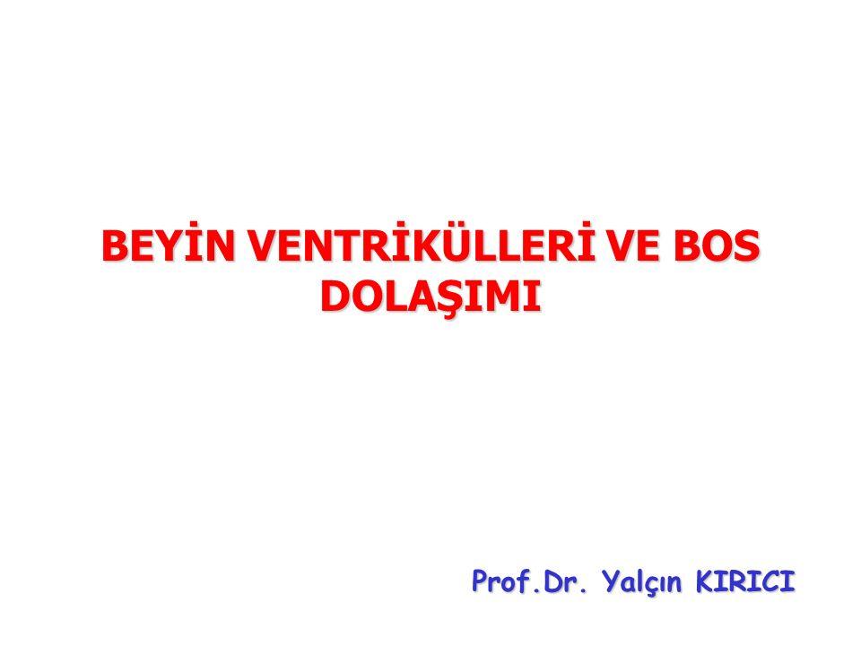 BEYİN VENTRİKÜLLERİ VE BOS DOLAŞIMI Prof.Dr. Yalçın KIRICI