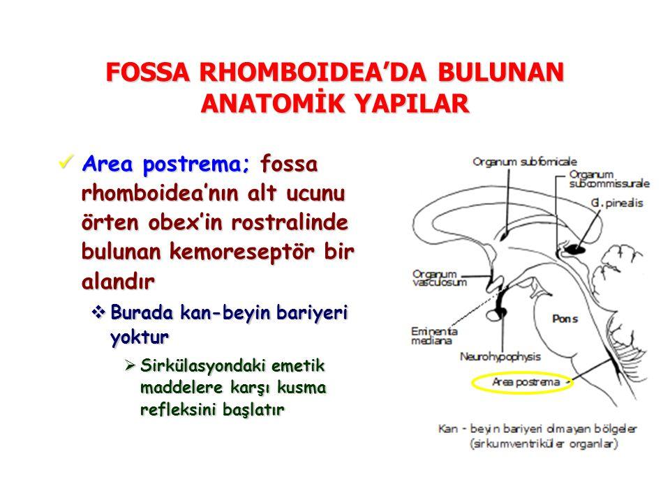 FOSSA RHOMBOIDEA'DA BULUNAN ANATOMİK YAPILAR Area postrema; fossa rhomboidea'nın alt ucunu örten obex'in rostralinde bulunan kemoreseptör bir alandır Area postrema; fossa rhomboidea'nın alt ucunu örten obex'in rostralinde bulunan kemoreseptör bir alandır  Burada kan-beyin bariyeri yoktur  Sirkülasyondaki emetik maddelere karşı kusma refleksini başlatır
