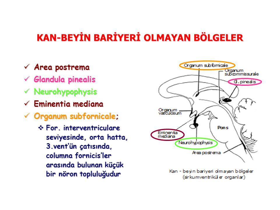 KAN-BEYİN BARİYERİ OLMAYAN BÖLGELER Area postrema Area postrema Glandula pinealis Glandula pinealis Neurohypophysis Neurohypophysis Eminentia mediana Eminentia mediana Organum subfornicale; Organum subfornicale;  For.