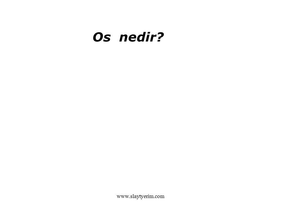 www.slaytyerim.com Os nedir?