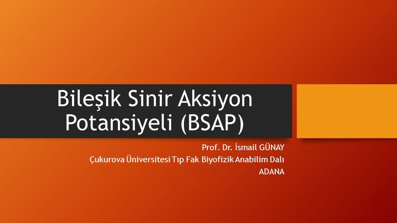 Bileşik Sinir Aksiyon Potansiyeli (BSAP) Prof. Dr. İsmail GÜNAY Çukurova Üniversitesi Tıp Fak Biyofizik Anabilim Dalı ADANA