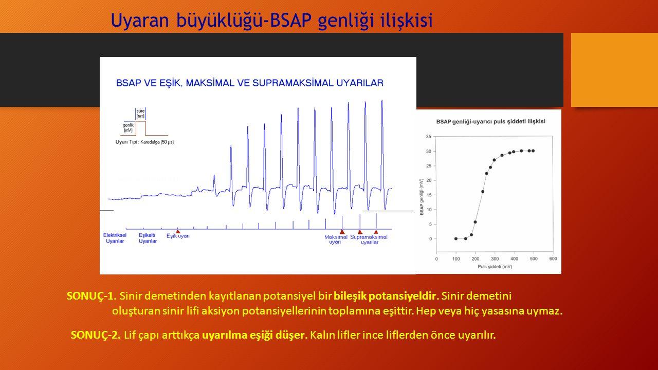 Uyaran büyüklüğü-BSAP genliği ilişkisi SONUÇ-1.