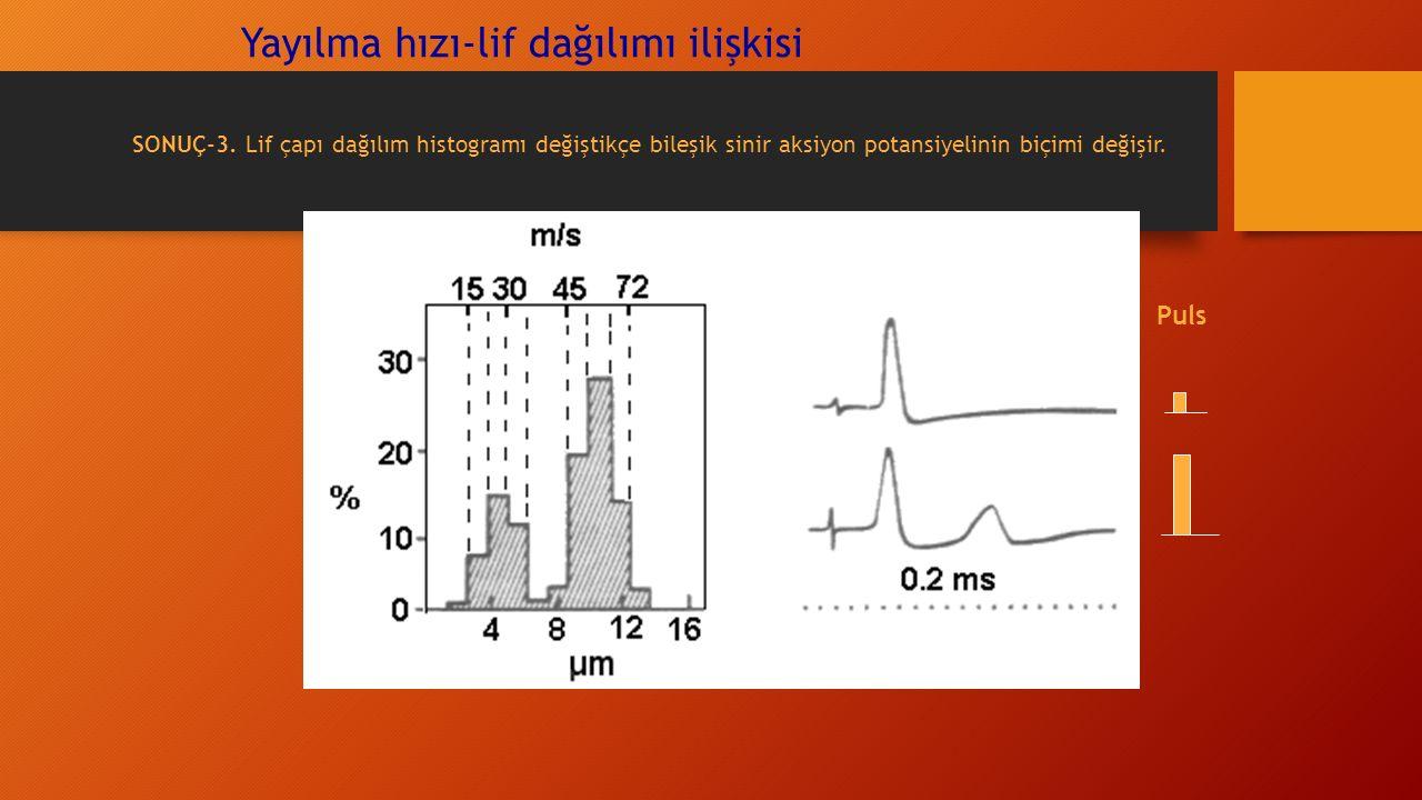 Yayılma hızı-lif dağılımı ilişkisi Puls SONUÇ-3.