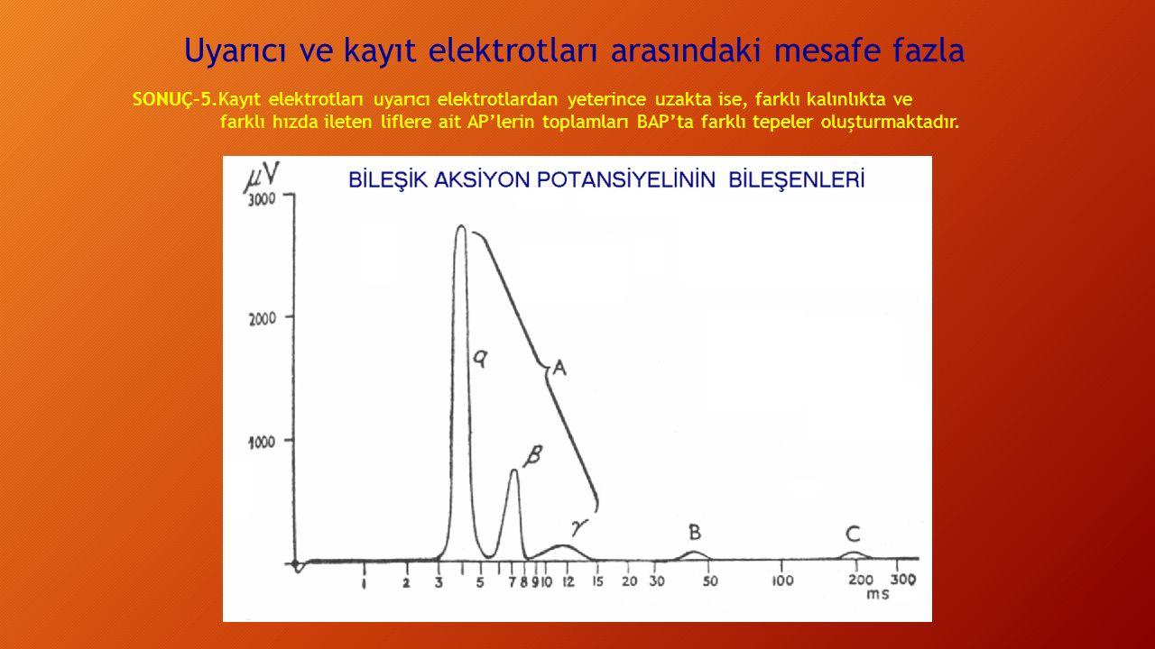 Uyarıcı ve kayıt elektrotları arasındaki mesafe fazla SONUÇ-5.Kayıt elektrotları uyarıcı elektrotlardan yeterince uzakta ise, farklı kalınlıkta ve farklı hızda ileten liflere ait AP'lerin toplamları BAP'ta farklı tepeler oluşturmaktadır.