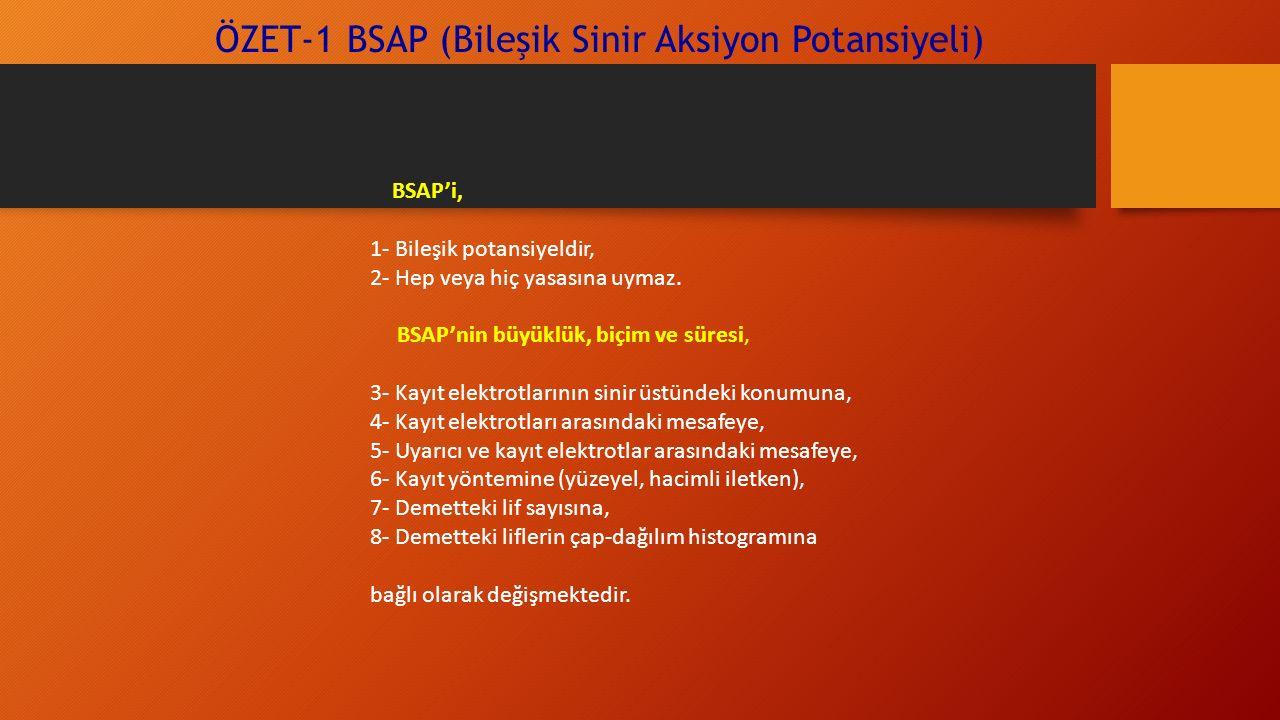 ÖZET-1 BSAP (Bileşik Sinir Aksiyon Potansiyeli) BSAP'i, 1- Bileşik potansiyeldir, 2- Hep veya hiç yasasına uymaz. BSAP'nin büyüklük, biçim ve süresi,