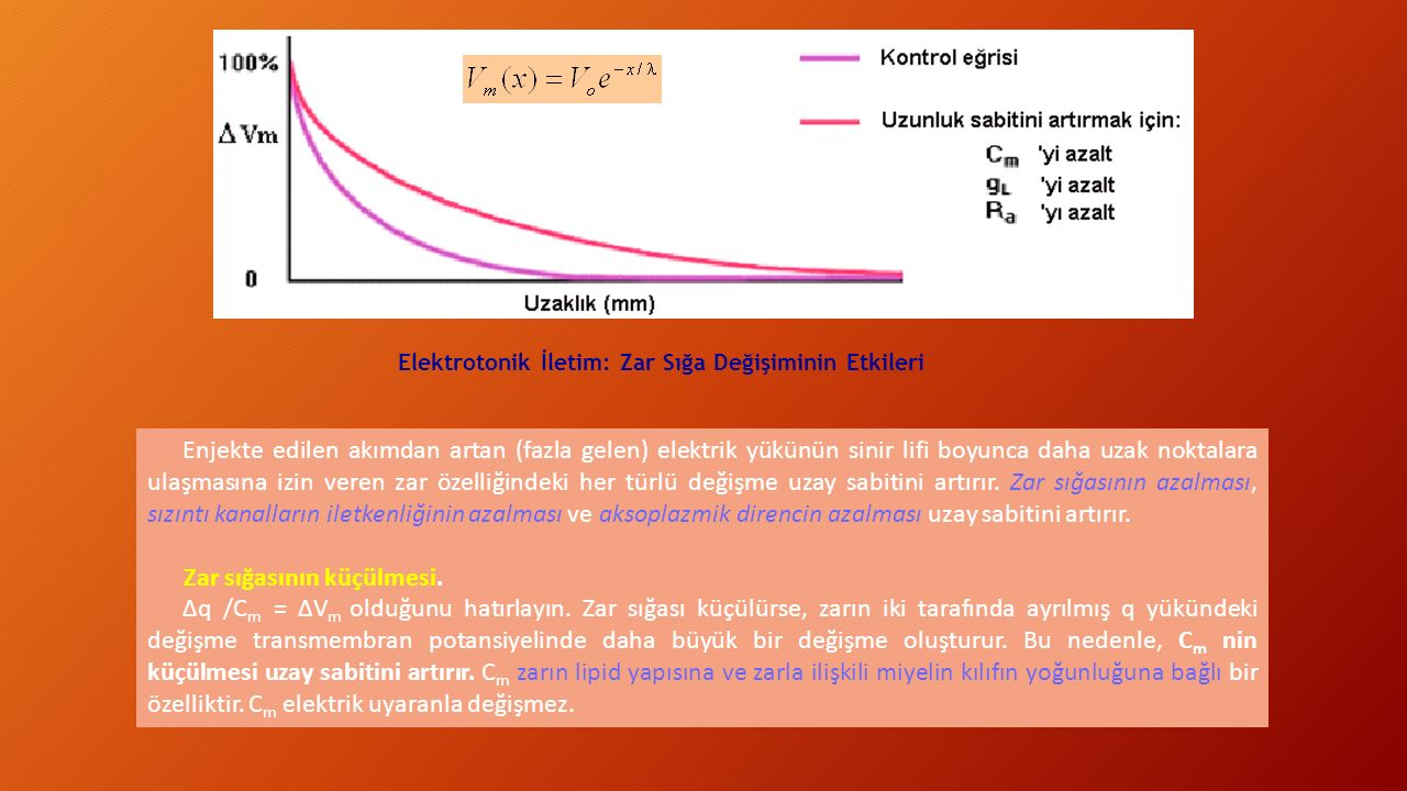 Elektrotonik İletim: Zar Sığa Değişiminin Etkileri Enjekte edilen akımdan artan (fazla gelen) elektrik yükünün sinir lifi boyunca daha uzak noktalara