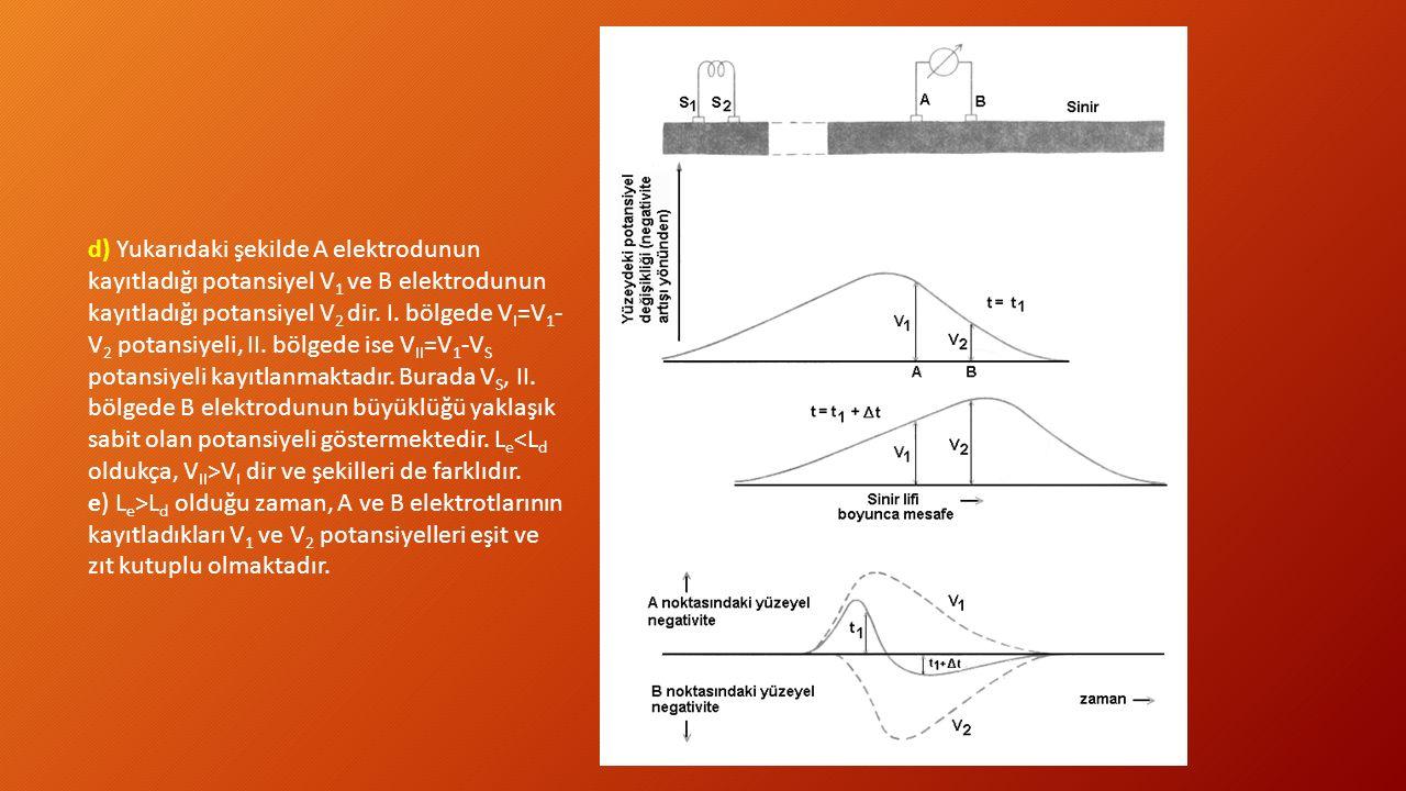 d) Yukarıdaki şekilde A elektrodunun kayıtladığı potansiyel V 1 ve B elektrodunun kayıtladığı potansiyel V 2 dir. I. bölgede V I =V 1 - V 2 potansiyel