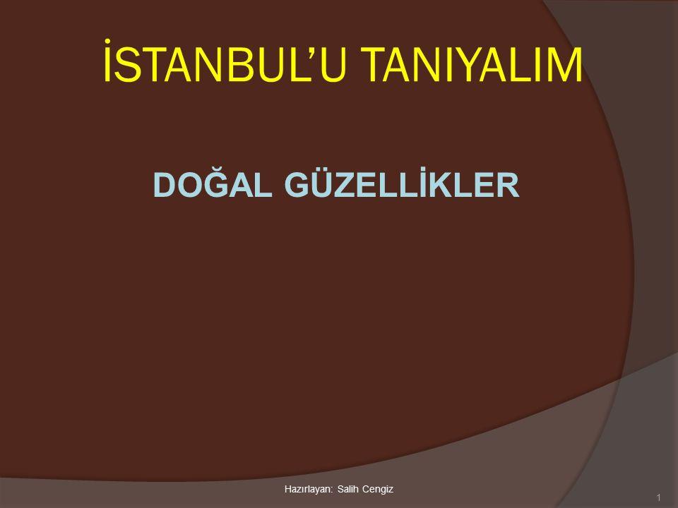 İSTANBUL'U TANIYALIM DOĞAL GÜZELLİKLER 1 Hazırlayan: Salih Cengiz