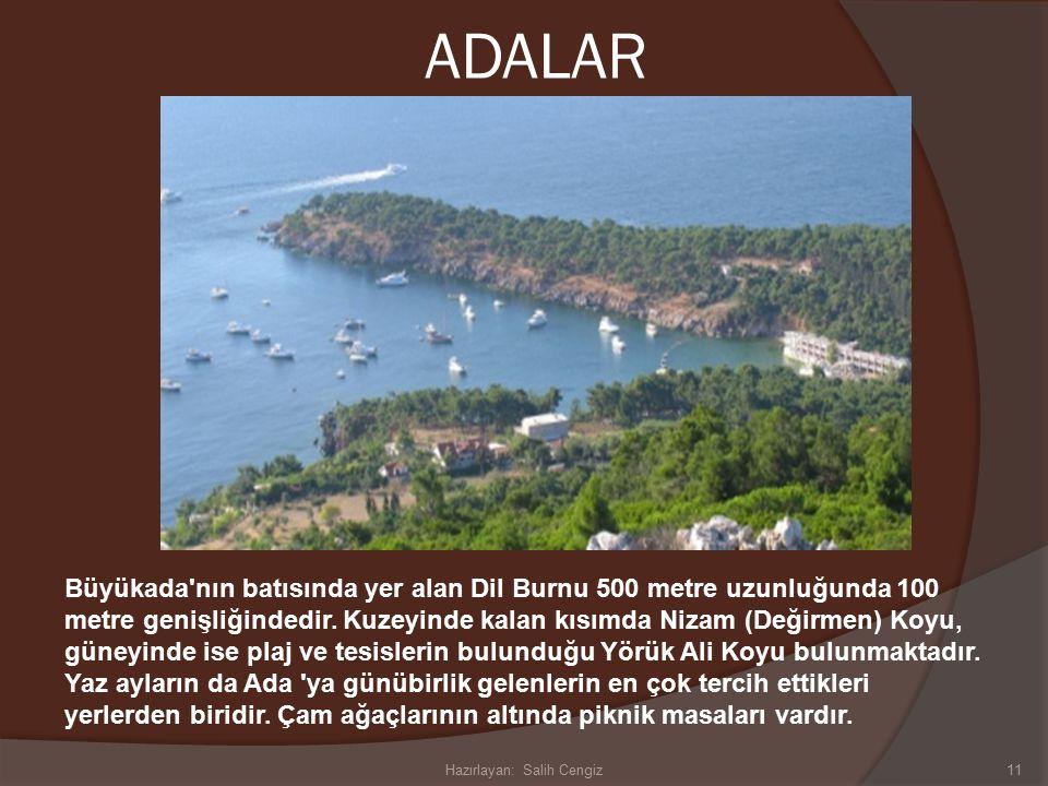 ADALAR Büyükada nın batısında yer alan Dil Burnu 500 metre uzunluğunda 100 metre genişliğindedir.