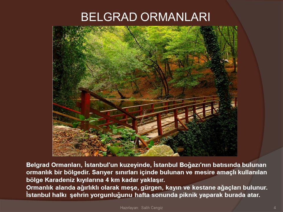 EMİRGAN KORUSU İstanbul'un en ünlü korularından birisi olan Emirgan Korusu, Baltalimanı ile İstinye arasında yer alır.
