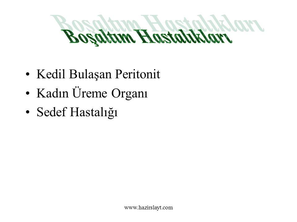 www.hazirslayt.com Kedil Bulaşan Peritonit Kadın Üreme Organı Sedef Hastalığı