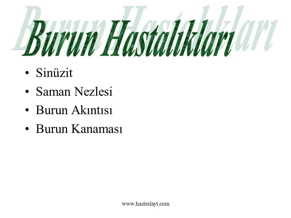 www.hazirslayt.com Sinüzit Saman Nezlesi Burun Akıntısı Burun Kanaması