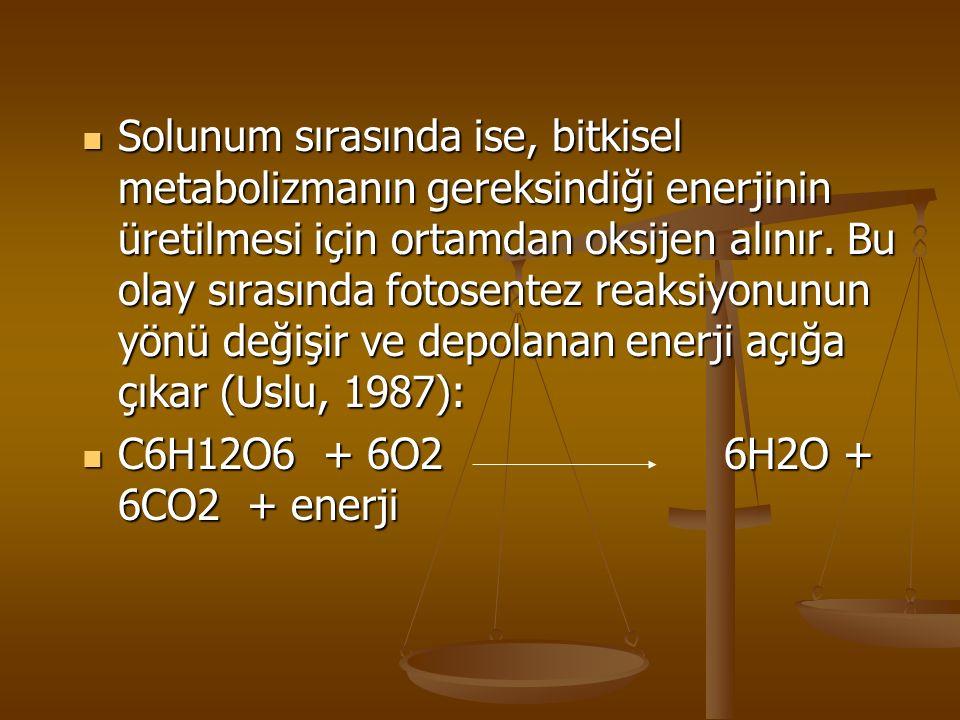 Solunum sırasında ise, bitkisel metabolizmanın gereksindiği enerjinin üretilmesi için ortamdan oksijen alınır. Bu olay sırasında fotosentez reaksiyonu
