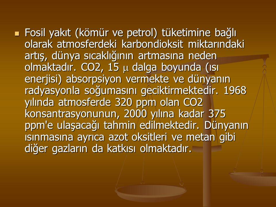 Fosil yakıt (kömür ve petrol) tüketimine bağlı olarak atmosferdeki karbondioksit miktarındaki artış, dünya sıcaklığının artmasına neden olmaktadır. CO
