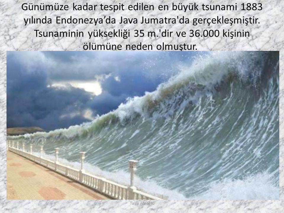 Günümüze kadar tespit edilen en büyük tsunami 1883 yılında Endonezya'da Java Jumatra da gerçekleşmiştir.