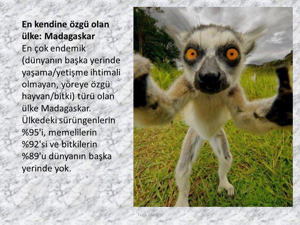 En kendine özgü olan ülke: Madagaskar En çok endemik (dünyanın başka yerinde yaşama/yetişme ihtimali olmayan, yöreye özgü hayvan/bitki) türü olan ülke Madagaskar.